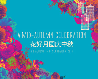 Mid Autumn Festival Moon Cake